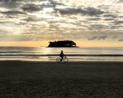 Was muss ein guter Fahrradträger für E-Bikes können?