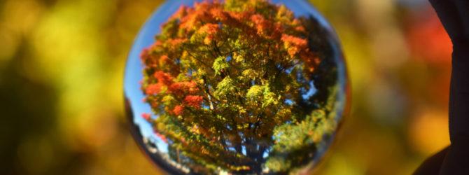 Herbstliche Dekoration mit Gardinen
