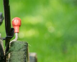 Rasenmäher Test: Worauf es tatsächlich ankommt