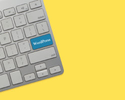 Content Management Systeme: WordPress